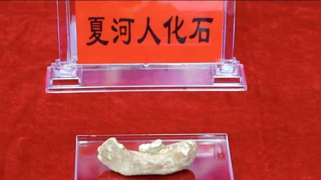 新发现:16万年前青藏高原已有人类