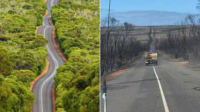 第三大岛1/3被烧,澳洲总理求捐款
