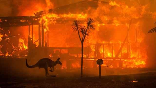 澳洲山火肆虐,政府为何不作为?