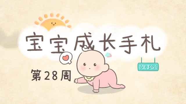 宝宝28周,可以开始训练宝宝爬行了