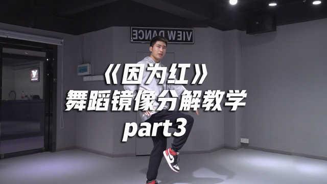 《因为红》舞蹈镜像分解教学part3