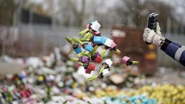 荷兰单日销毁百万束鲜花,全年产量70%至80%没了