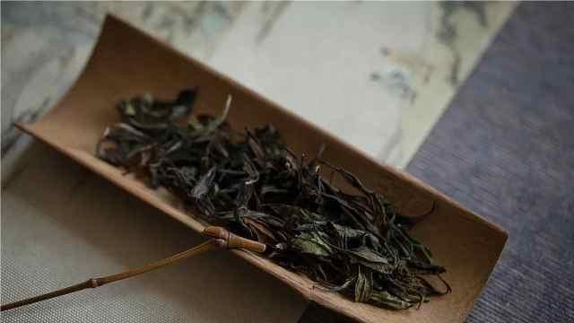 不是福鼎也不是政和,是武夷山高山茶!