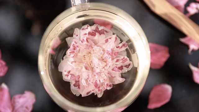 最贵玫瑰花1斤1万元:花农凌晨1点起床采摘,-41度速冻保鲜