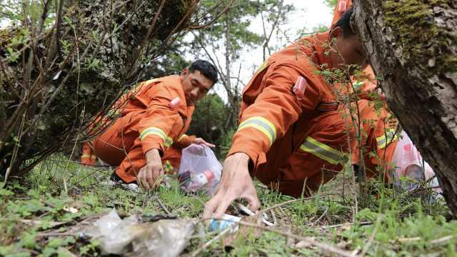 消防高原驻训顺手走进森林捡垃圾:游客增多垃圾也变多