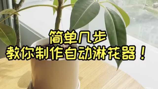 自动淋花器该怎么做?