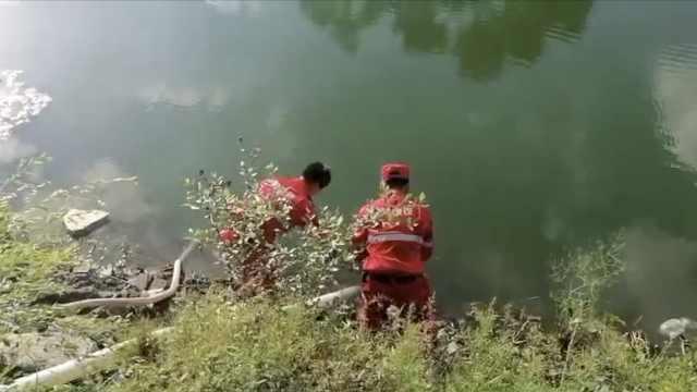 鹤岗46岁女子失联8天,救援队抽干池塘搜寻