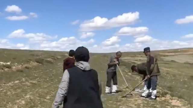 最高奖励20万!内蒙古乌拉特中旗设感染鼠疫线索报告奖励