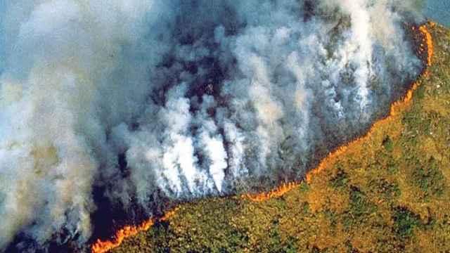 8月上旬超万场大火!亚马逊恐经历10年来最严重火灾季节