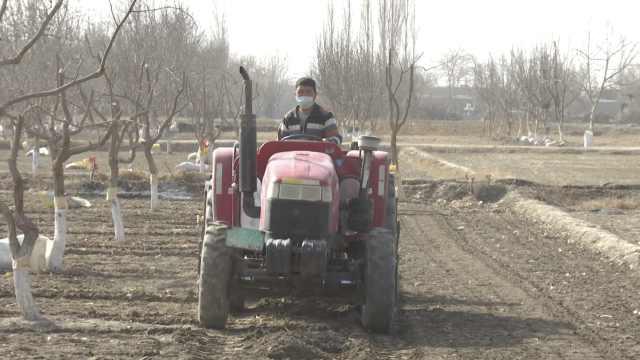 新疆沙雅县1.3万亩春小麦顶凌播种,田间地头一片繁忙