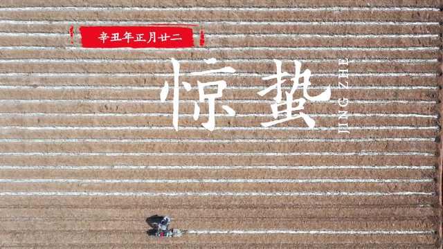 惊蛰 | 万物复苏,航拍中国