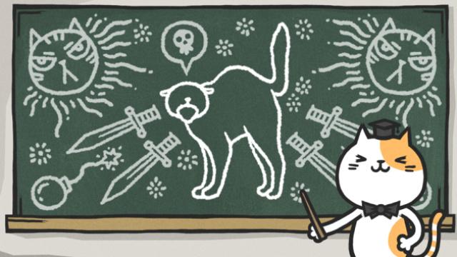 七个身体姿势,教你看懂猫主子心情