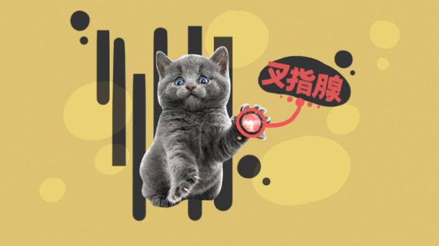 吸猫到底吸的是啥味儿?