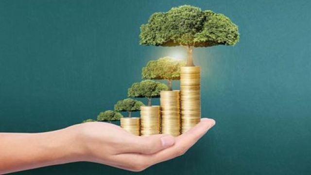 加快构建绿色金融体系