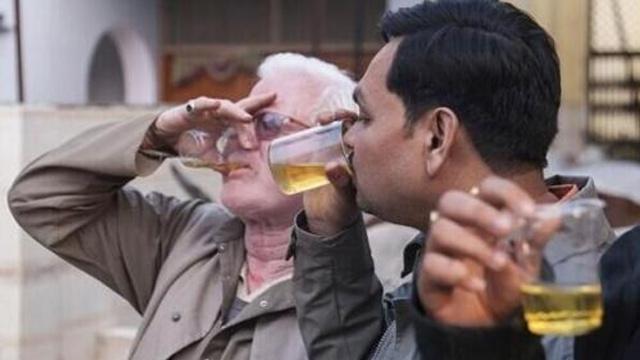 印度人对牛尿情有独钟?