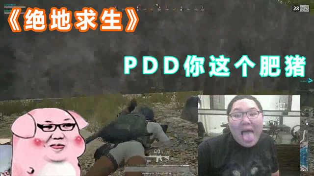 "PDD被水友大叫""你这个肥猪"""