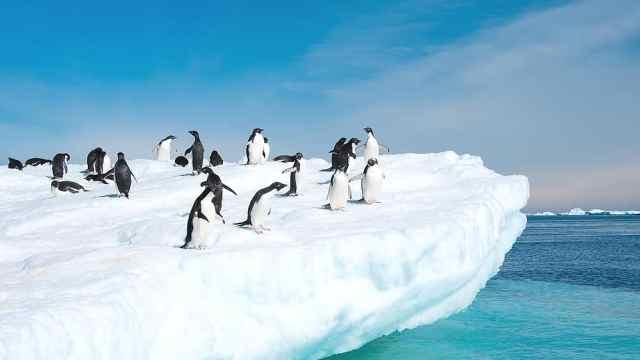 全球70%淡水藏在南极?地球的水库
