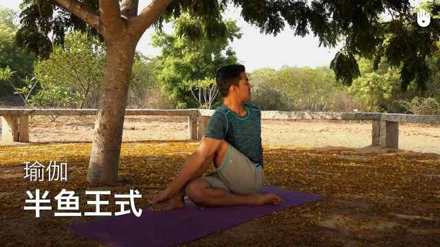 sikana瑜伽教程:半鱼王式