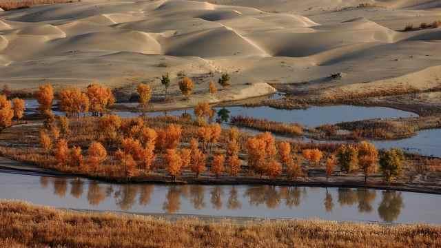 神秘的沙漠之河,塔里木河失踪之谜