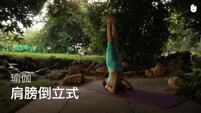 sikana瑜伽教程:肩膀倒立式