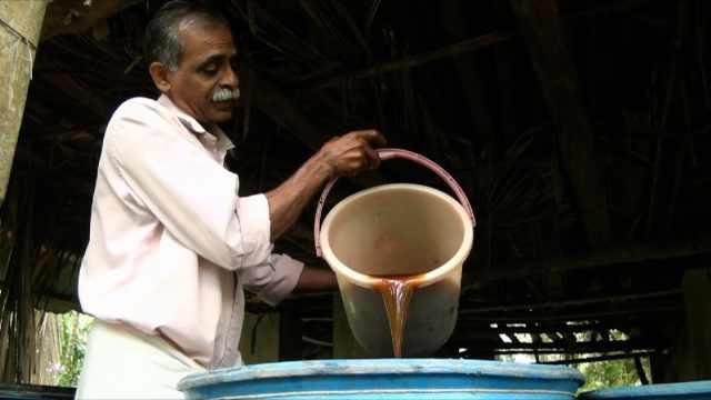 印度农民和牛的密切关系