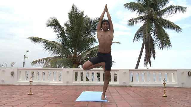 印度古式瑜伽教学:树式