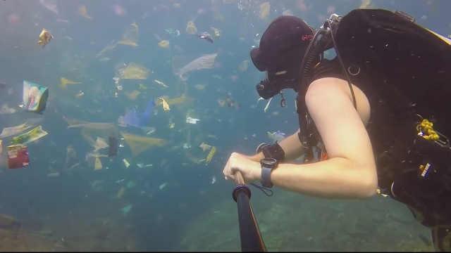 网友在印尼潜水,拍下了这样的一幕