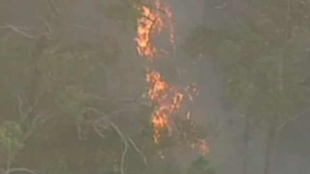 澳大利亚发生山火,燃烧了一夜