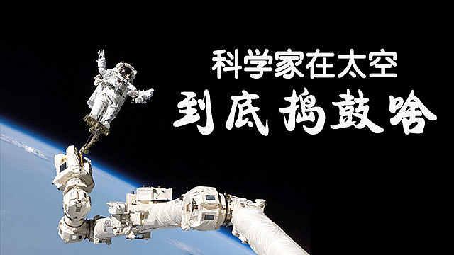 科学家在太空到底捣鼓啥?