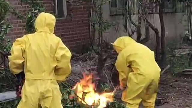 马蜂闯进居民家,消防锯树喷火处理