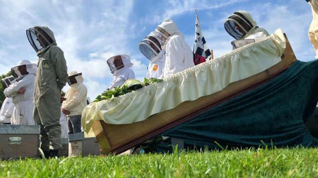 """法国养蜂人为蜜蜂举办""""葬礼"""""""