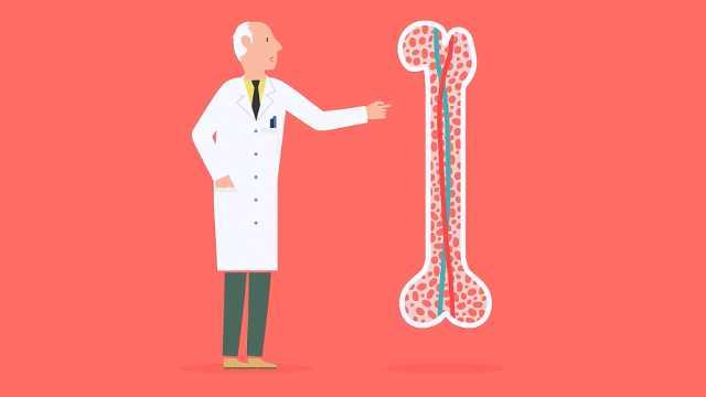 药神背后:1分钟告诉你白血病常识