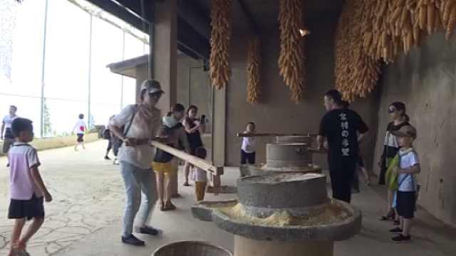 2000余游客北川避暑,体验农耕生活