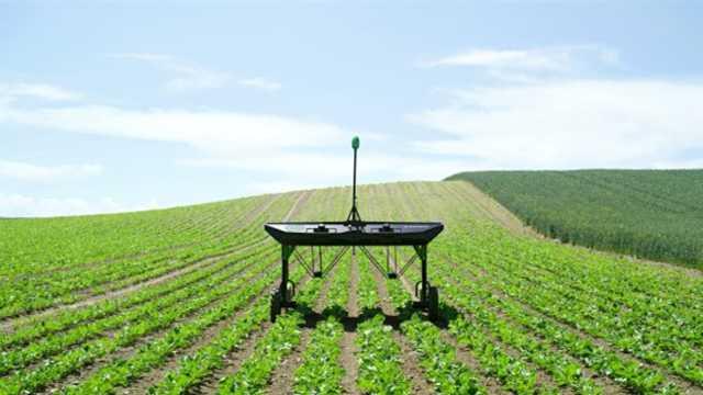 太阳能除草机,一个顶十个农夫