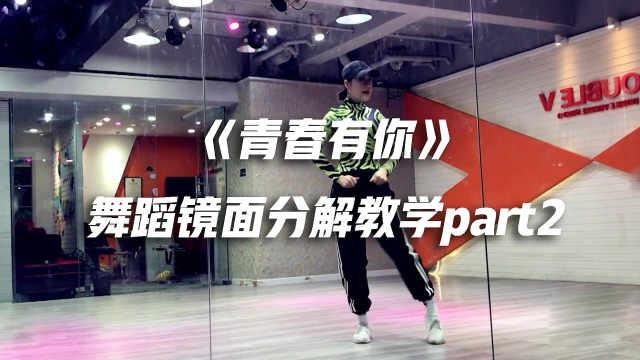 《青春有你》舞蹈镜面分解教学p2