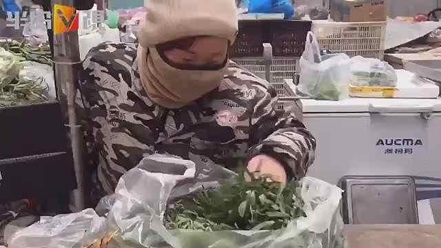 新鲜的野菜上市啦,面条菜每斤6元