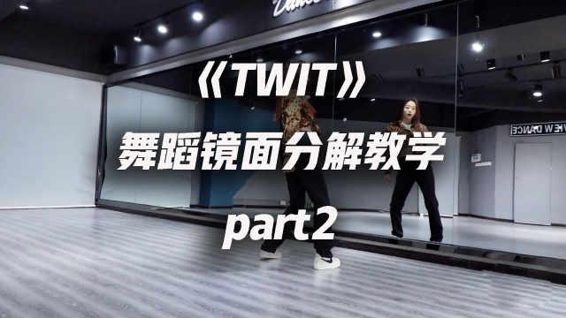 华莎《TWIT》舞蹈镜面分解教学p2