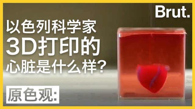 以色列科学家3D打印的心脏什么样?