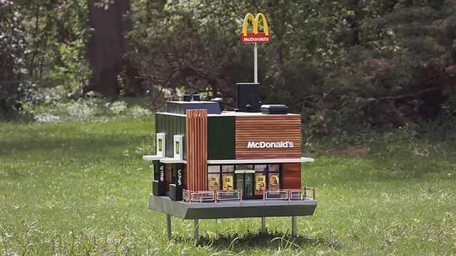 全世界最小快餐店,专为蜜蜂而设