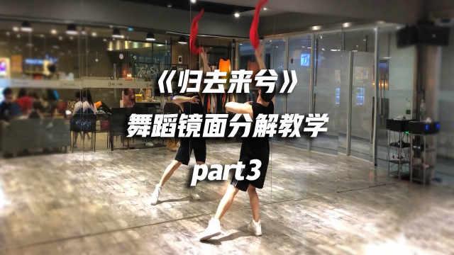 《归去来兮》舞蹈镜面分解教学p3