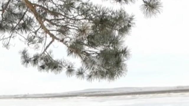 冰排伴雾凇,黑龙江雪景醉人