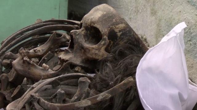 墨西哥亡灵节:用快乐祭奠悲伤
