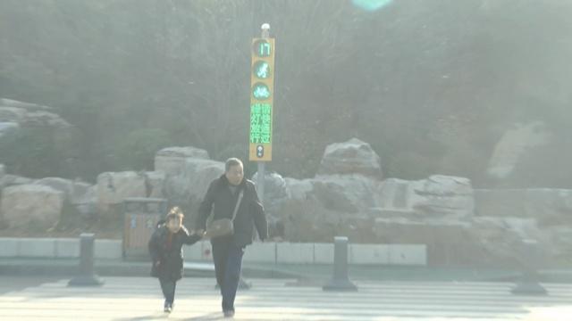 新式红绿灯,绿灯啥时亮,行人说了算