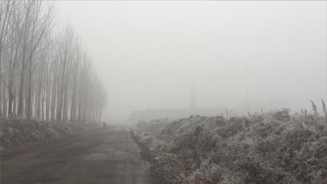 年度巨霾:钢铁厂和孩子过得怎么样
