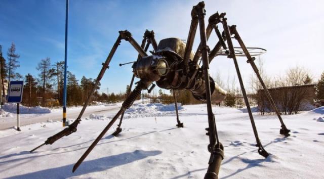 蚊子冬天如何续命?