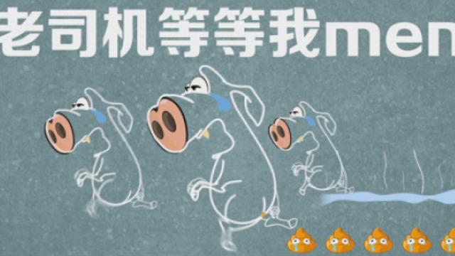 """你怎么看""""北大猪肉才子""""陆步轩"""