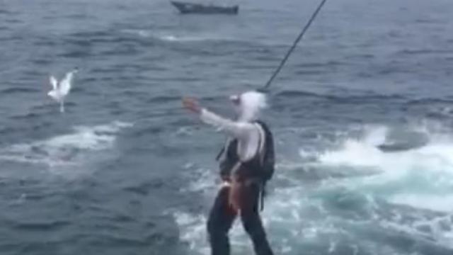 钓鱼的最高境界,空中的也不放过!
