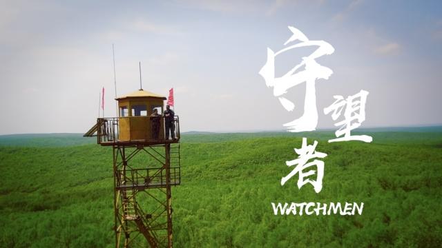 中国最孤独夫妻护林员,8年下山16次