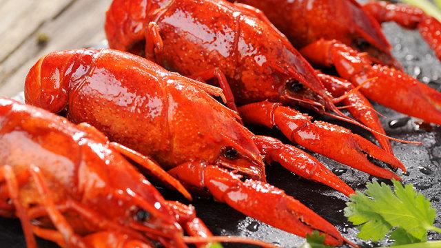 小龙虾终极拷问:吸虾头是在吃便便?