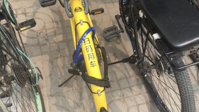 大学生剪共享单车私锁被夸:剪得好